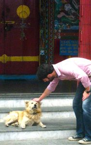 The boy meets a Buddhist dog.