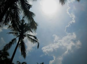 The sun in paradise.