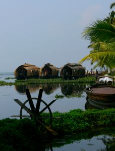 The lake at Kumarakom.