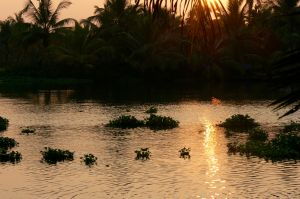 Sunset over the backwaters at Vaamika.